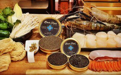 Instant gastronomique autour du caviar et de la boutargue. St Jacques et gambas pour accompagner la